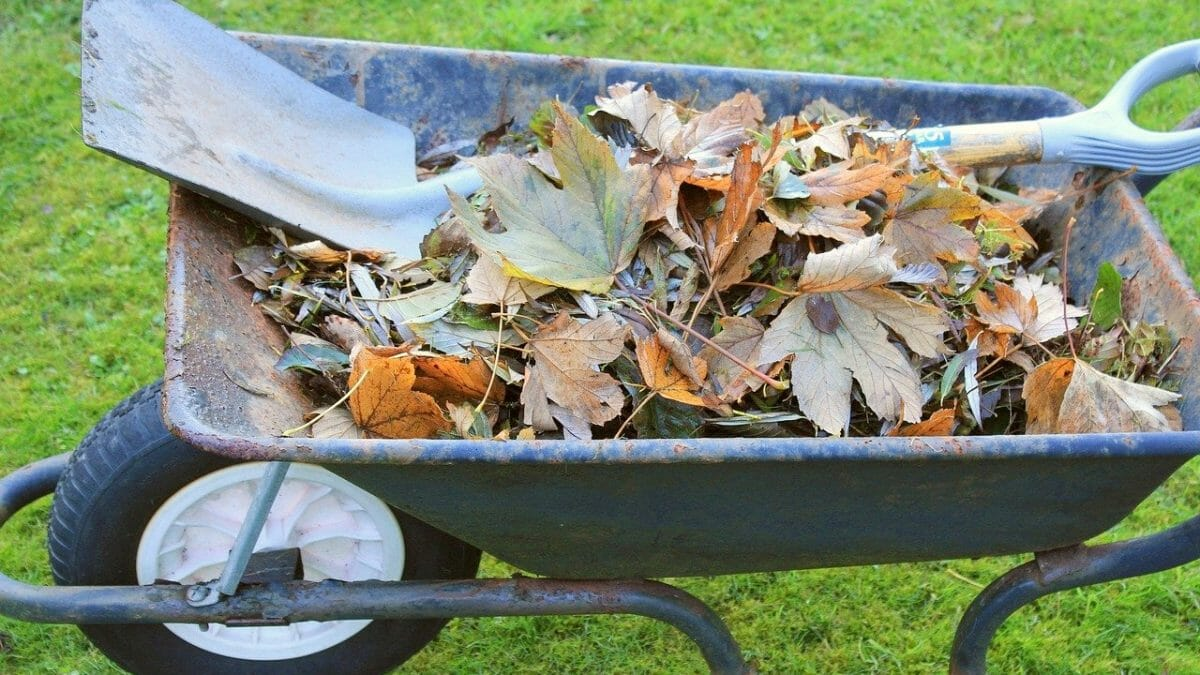 Waste best disposed of using a garden skip hire service