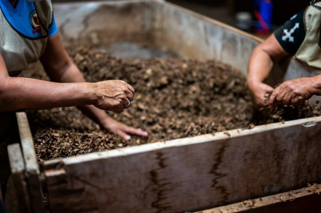 Hands in the compost bin
