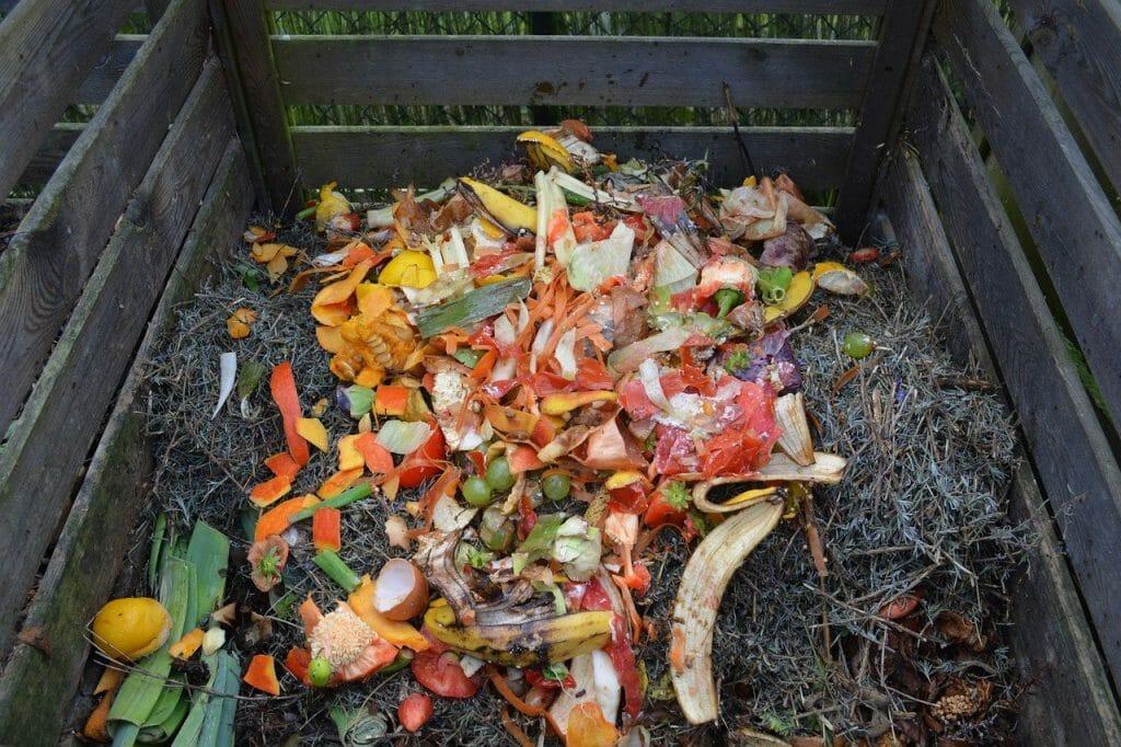 Food waste in the composting bin