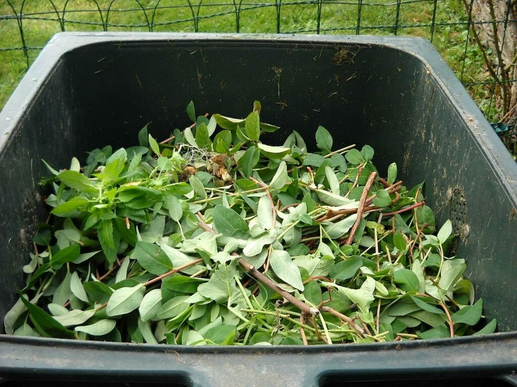 Green waste in the composting bin