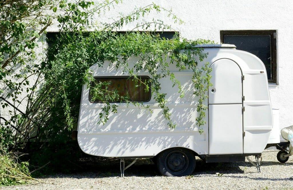 A caravan under a branch